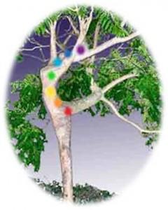 Chakra-tree-240x300